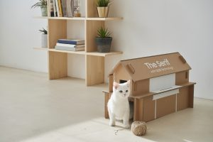 Eco-Packaging-for-Lifestyle-TV